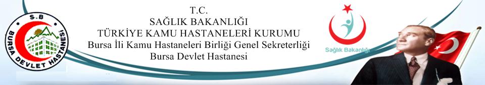 bursa_devlet_logo